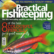 Practical Fishkeeping Subscribe