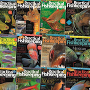 Practical Fishkeeping Digital Editions